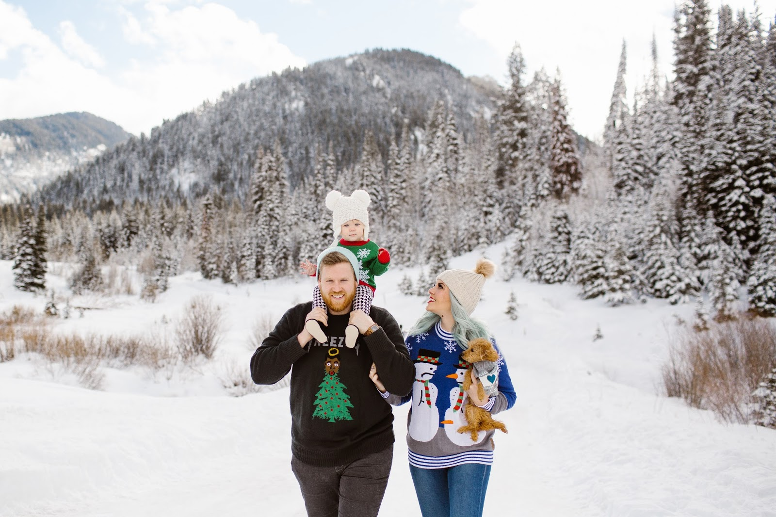Family Photos, Christmas Sweaters, Christmas Sweater Photos