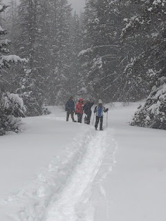 Winter day with lots of snow falling on the 4 people snowshoeing on a forest trail.