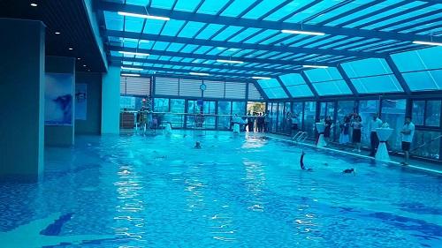 Gelexia Riverside sở hữu bể bơi 4 mùa chuẩn nghỉ dưỡng