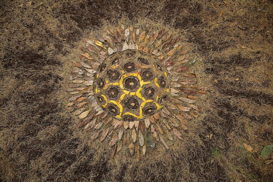 Artist Turns Natural Objects Into Mesmerizing Mandalas And Leaves Them For People To Discover