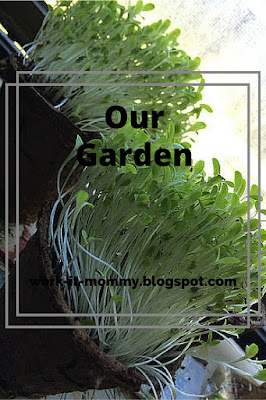 Our Garden, Spring Fun List