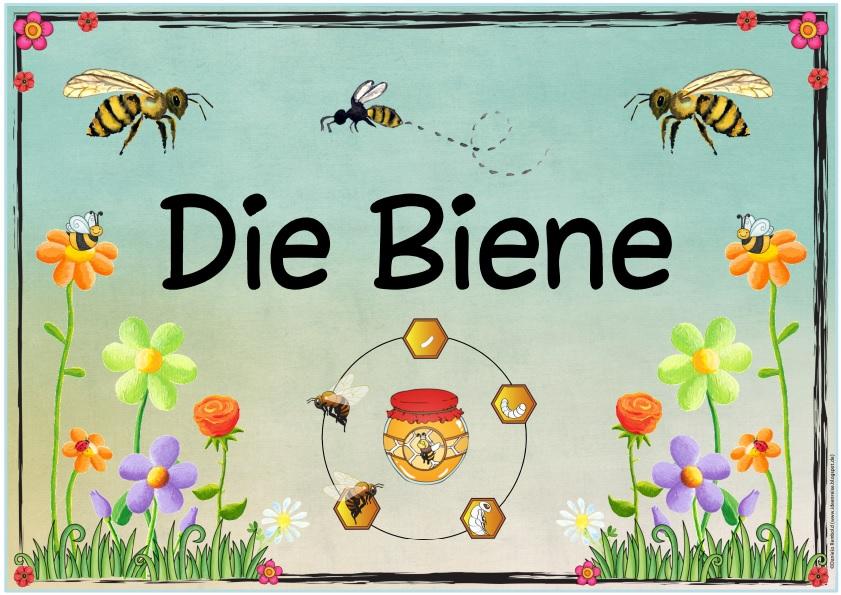 Arbeitsblatt Bienen Grundschule : Ideenreise themenplakat quot die biene