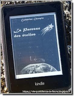 Vie quotidienne de FLaure : Lecture : La paresse des étoiles par CHOUPIN Catherine