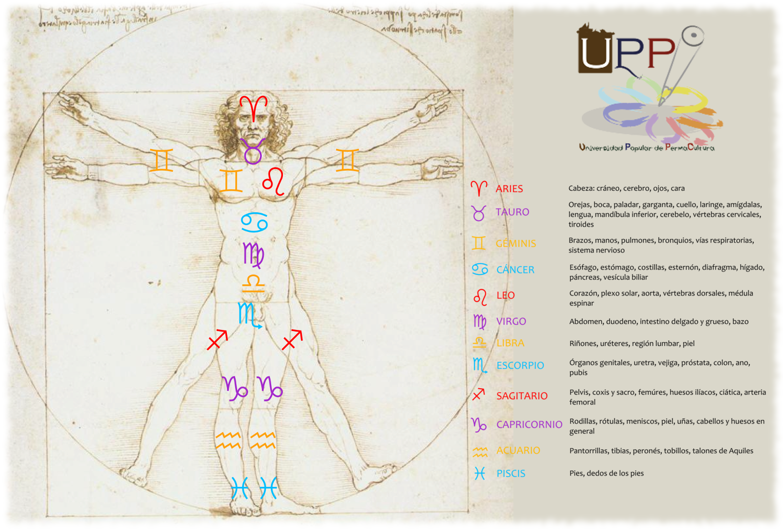Signos y cuerpo humano