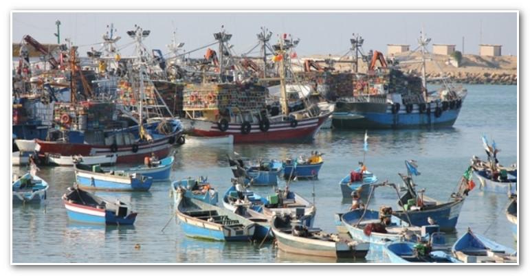 مراكب صيد تلجأ لميناء طنجة الجديد بسبب التقلبات الجوية