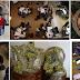 Πρόγραμμα INCREdible: Δίκτυα καινοτομίας για τα προϊόντα του δάσους