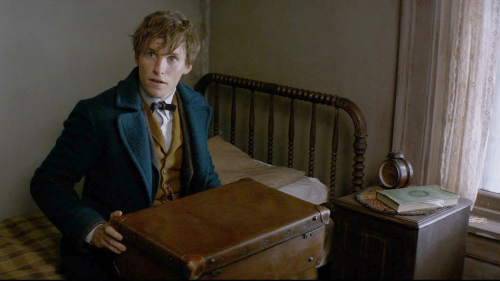 fantastic-beasts-movie-uk-release-date