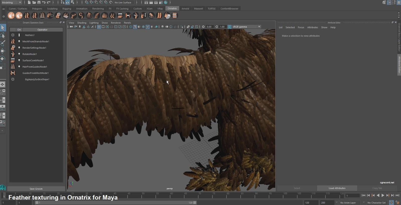 Feather texturing in Ornatrix for Maya | CG TUTORIAL