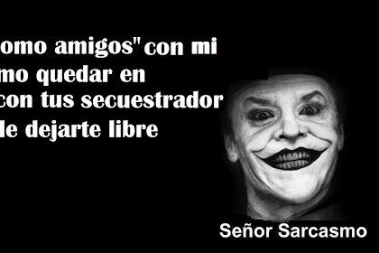 Amor Senor Sarcasmo Frases Nuevas