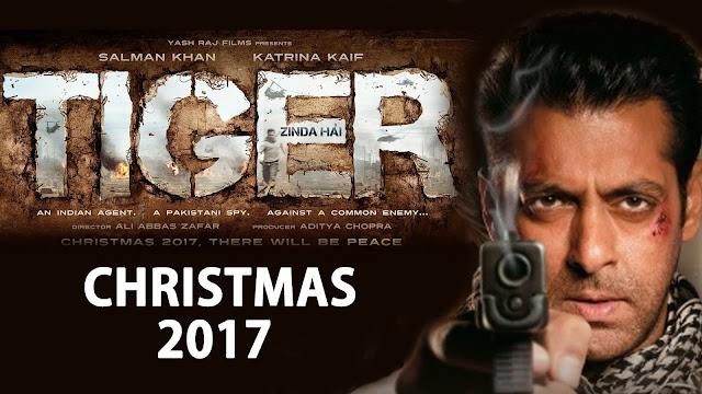 Sinopsis Film Tiger Zinda Hai (2017)