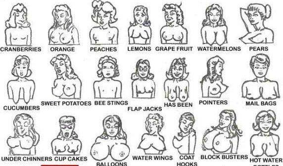 Gambar Bentuk-Bentuk Payudara Wanita