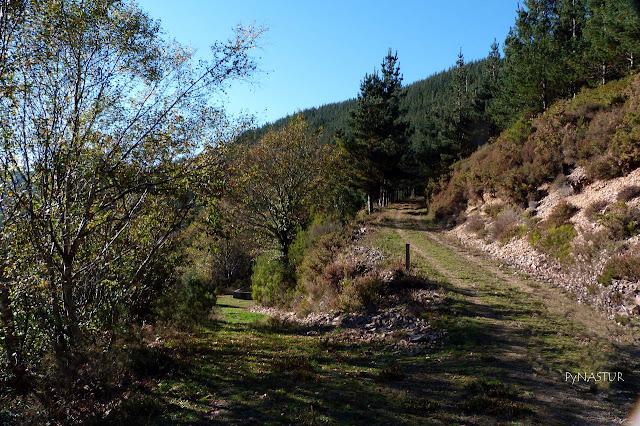 Ruta del Silencio - Villanueva de Oscos - Asturias