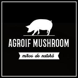 agroif.com
