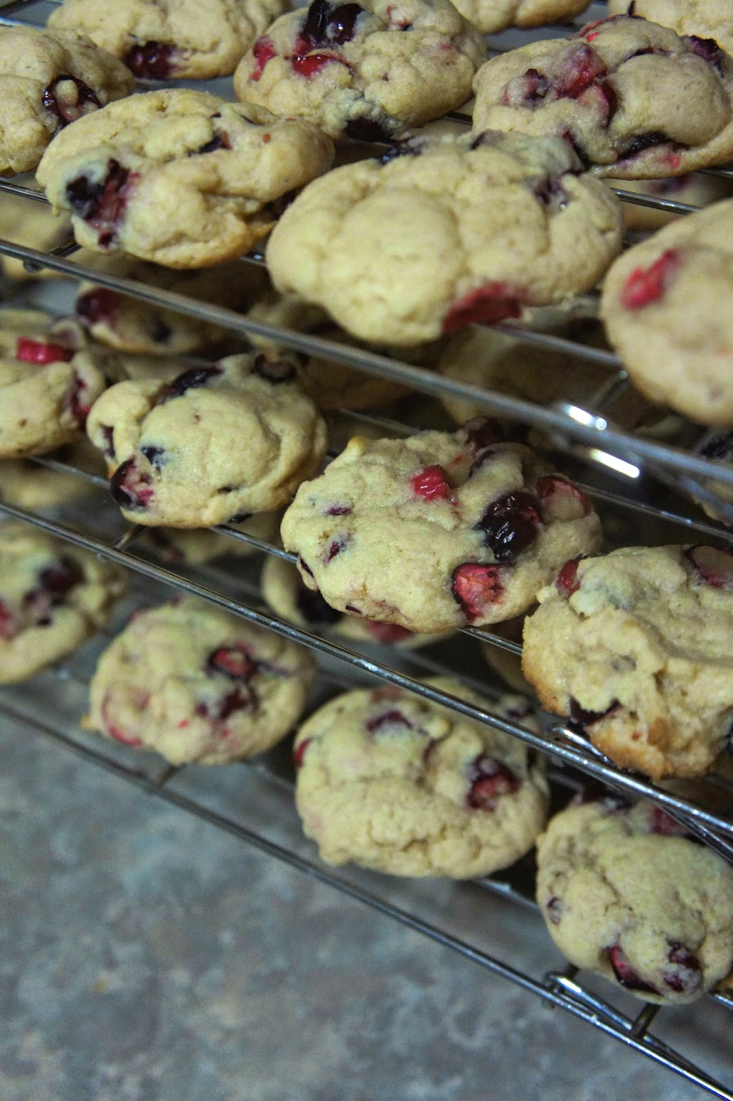 Cranberry Cookies: Savory Sweet and Satisfying
