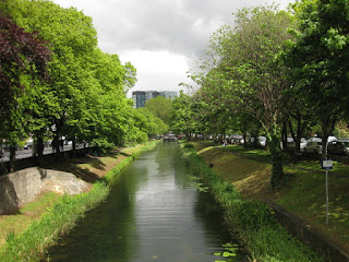 Tree-line Grand Canal on a cloudy day, Dublin, Ireland