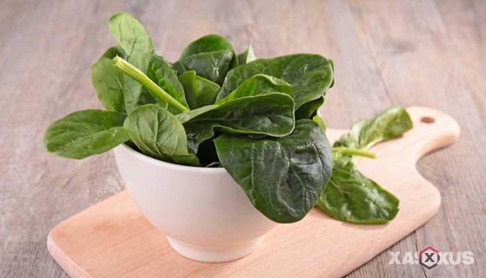 Makanan penambah darah - Bayam, sayuran penambah darah