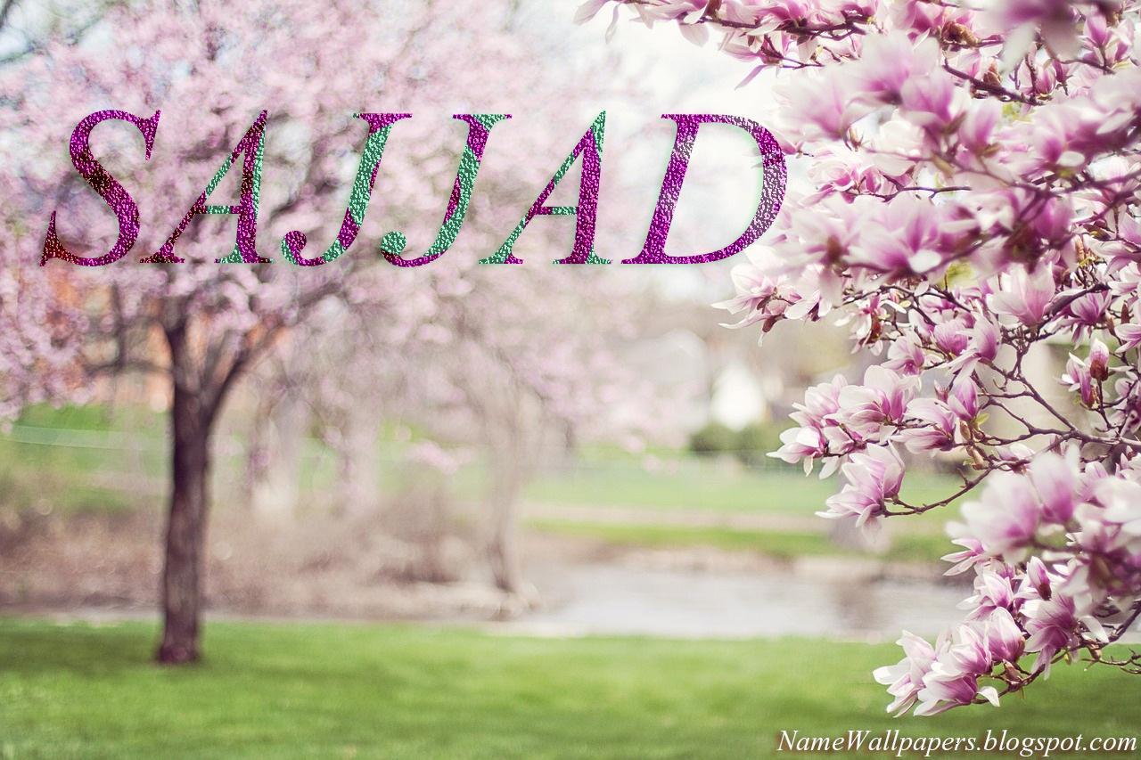 20 3d images for sajjad.