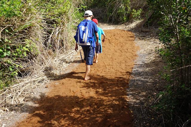 הליכה על חול