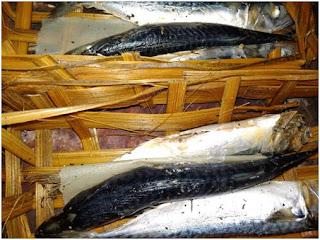 Nutrisi Ikan Laut beserta Satu Resep Pilihan
