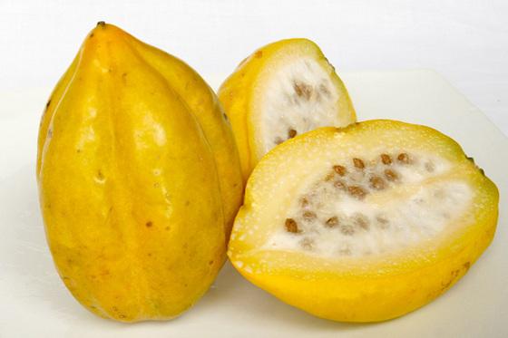 Gastronoma a Libreta Abierta I Papaya