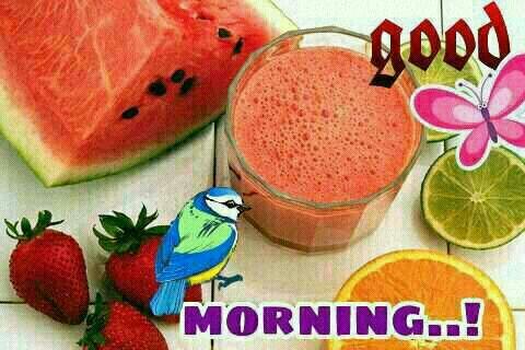 WhatsApp Good Morning