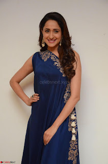 Pragya Jaiswal in beautiful Blue Gown Spicy Latest Pics February 2017 085.JPG