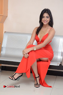 Actress Priyanka  Bharadwaj Pictures at Mister 420 Movie Logo Launch  0100.JPG