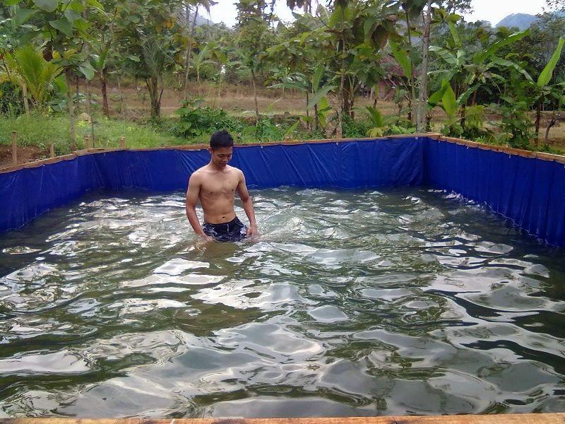 biaya pembuatan kolam beton lele