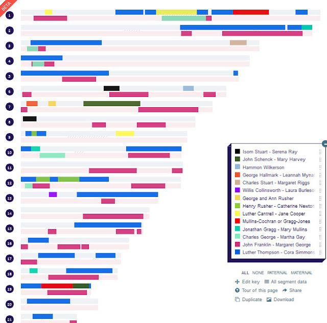 DNA Painter chromosome map