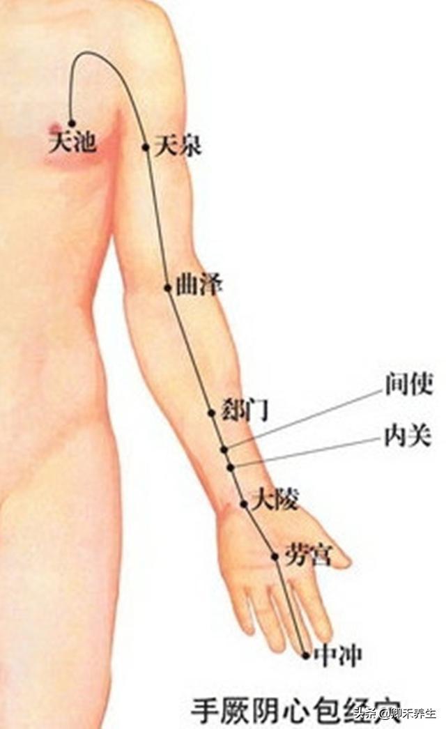 救命的經絡穴位,每晚8點拍一拍能預防冠心病心絞痛心腦血管疾病(心包經)