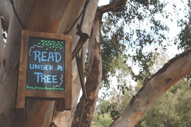 leggere-lettori-libri