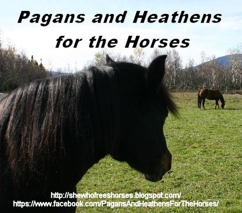 Pagans & Heathens for the Horses
