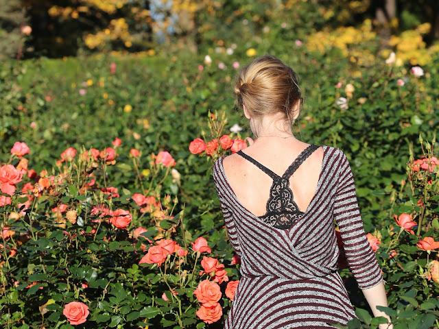Portland Rose Garden Lifestyle