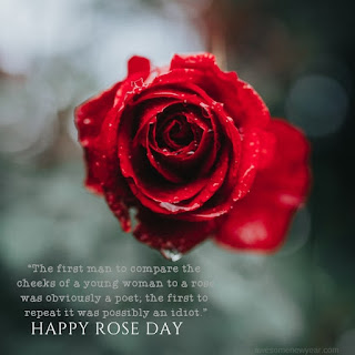 Rose Day Quotes with Images