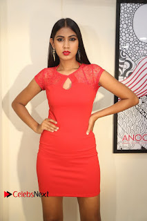 Actress Model Honey Pictures at Anoos Franchise Salon and Clinic Launch  0060.JPG