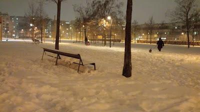 Bedner Park Wien