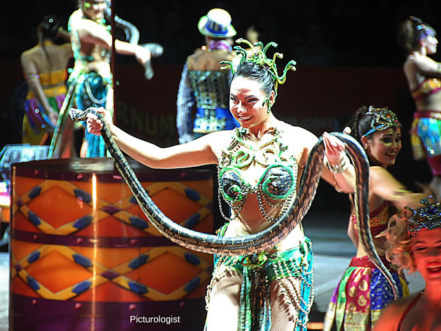Snake Charmer at Ringling Bros and Barnum and Bailey Circus Xtreme photo by K., Johnson, Picturologist