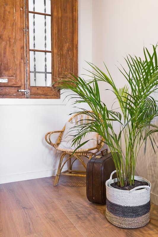 Lemn i mult personalitate ntr un apartament de 75 m for Al saffar interior decoration l l c