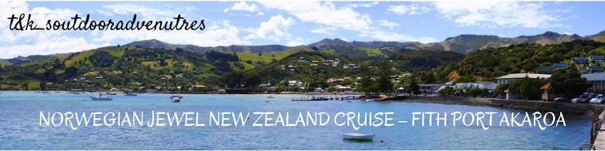 Norwegian Jewel New Zealand Cruise Fifth Port Akaroa