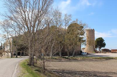 La Aldea. Delta del Ebro (Tarragona)