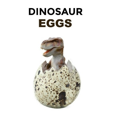 DIY HATCHING DINOSAUR EGGS- what?!?  These are so cool!  Can I be a kid again please??  #kidscrafts #dinosaurcrafts #playrecipes