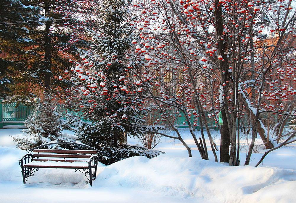 Tomsk Siberia Travel Guide