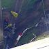 Helicóptero cai na rodovia Anhanguera em cima de caminhão