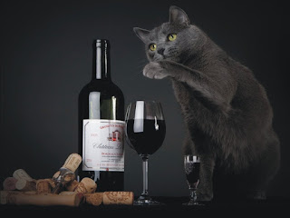 beaux-vin blog actualité vin pour chat