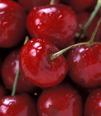 a bunch of bing cherries glistening wet
