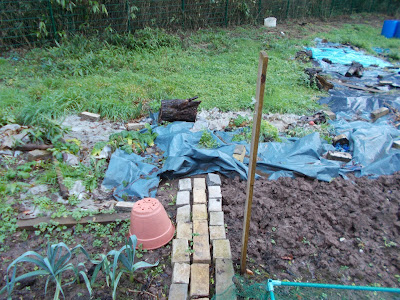 overgrown section covered in plastic sheeting The 80 Minute Allotment Green Fingered Blog