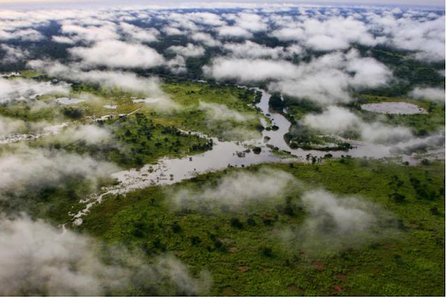 الكونغو,الكونغو الديمقراطية,أفريقيا
