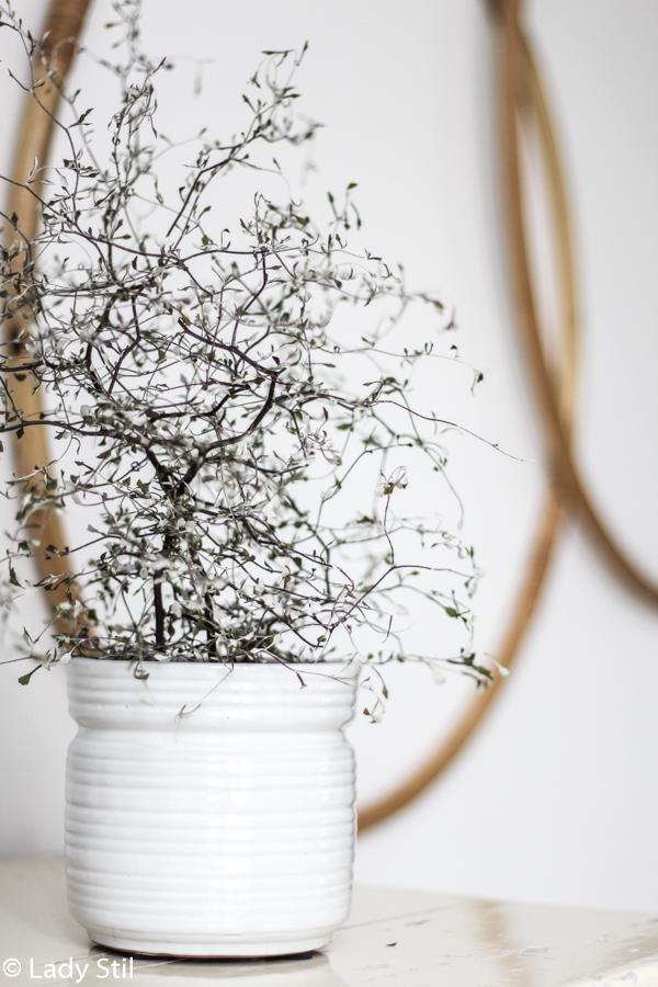weißer TineK Übertopf mit Pflanze und Hula Hoop Reifen im Hintergrund als Wanddeko