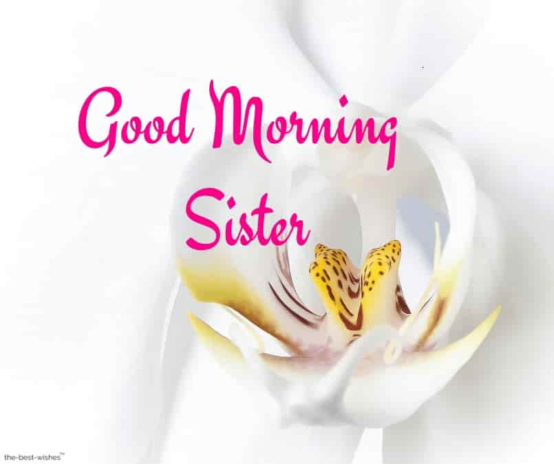pictures of good morning sister
