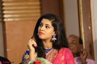 Lavanya in Red Saree at With Love Boys Movie First Look Launch 5th May 2017  Exclusive 008.JPG